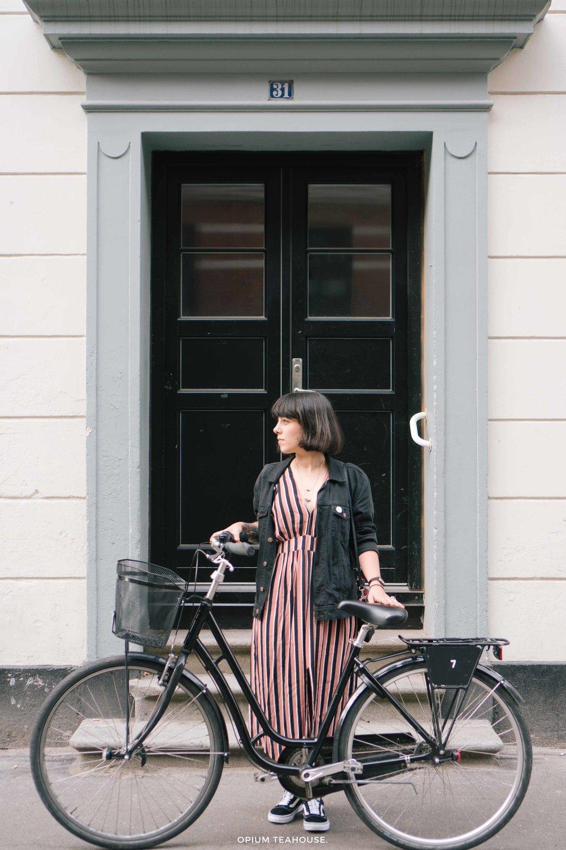 Norrebro bike Copenhagen — OTH.jpg