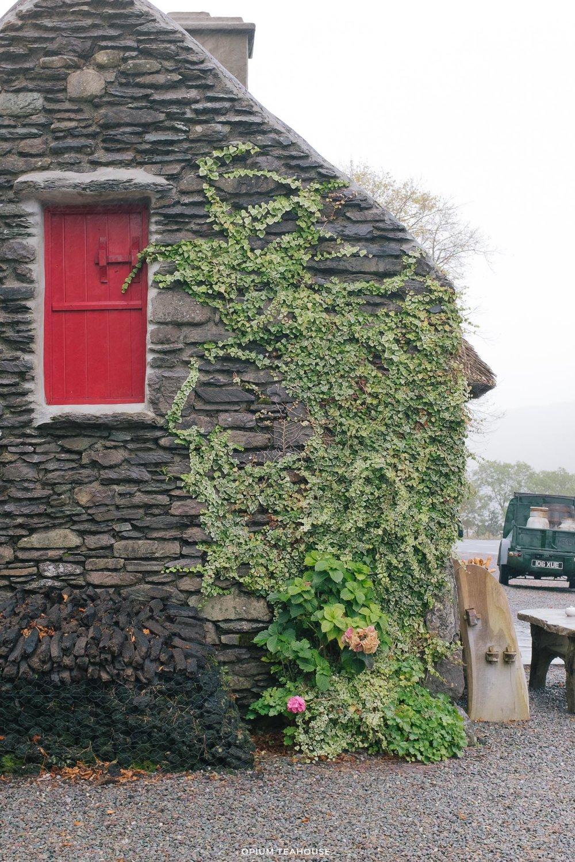 OTH_Ring of Beara Molly Galivan Cottage Ireland.jpg