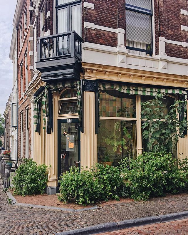 Peaceful Sundays 🌿 — have you ever got that feeling when you are visiting a place but manage to comfortably find a bit a routine as if you were at home? That's my current state. I almost feel like not going back to London! ⠀ ❈ ⠀ ⠀ #opiumteahouse #utrecht #visitholland⠀ ⠀ ❈ ⠀ ⠀ #welltravelled #mytinyatlas #passionpassport #thisisholland #stayandwander #wonderful_places #theconstantlycurious #roamtravels #prettycitiesofinstagram #passionpassport #theglobewanderer #travelblogger #thenetherlands #exploreutrecht  #SUITCASEtravels #travelphotography #guardiantravelsnaps #lifewelltravelled #plantproblems #thenetherlands #openmyworld #amsterdam #visitutrecht