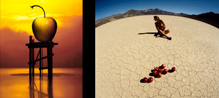 flood and drought - Copyright, Sam Haskins
