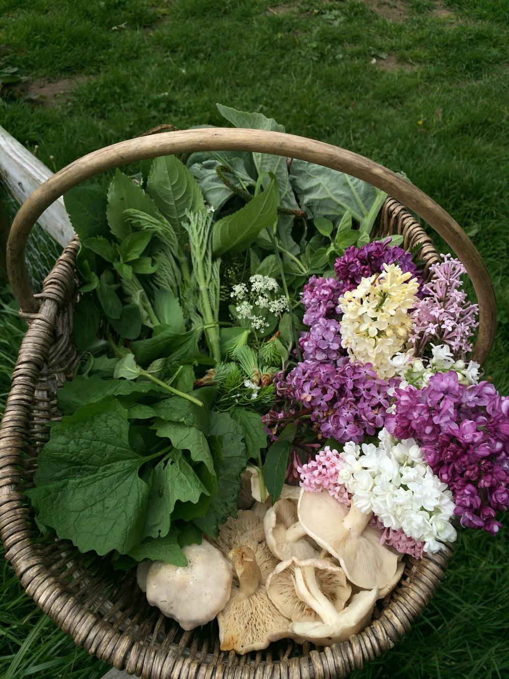 June Foraging Basket