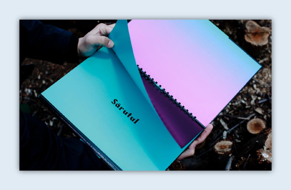 sarutul sensorial photobook