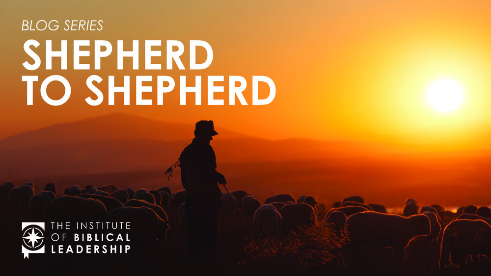 Shepherd to Shepherd IBL Blog