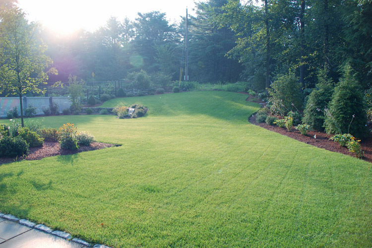 Planter Beds, Wall, and Lawn in Westford