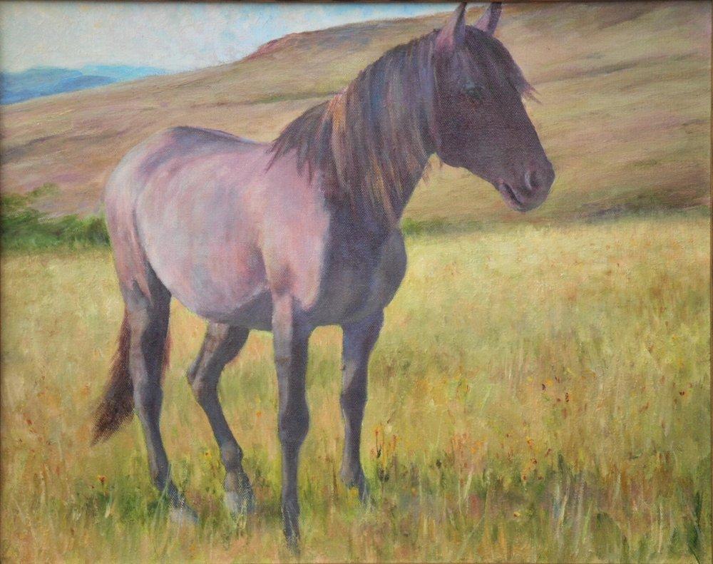 """Grulla Spanish Mustang"" by Mack Brislawn"
