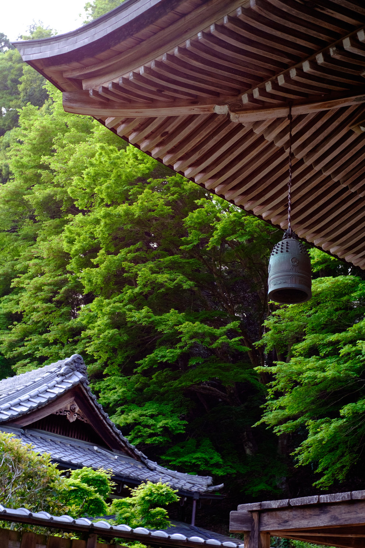 最も奏者と聴く人の条件や耳の距離が異なる『梵鐘』。叩く人は至近にあり、聴く人は遥か山を越えることすら、ある。  新緑の奈良県宇陀市室生寺梵鐘