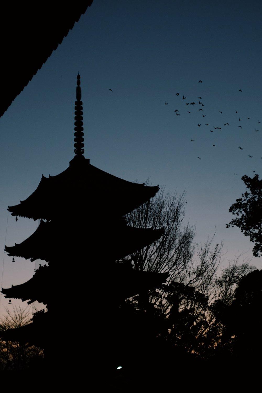 東寺_五重の塔.JPG