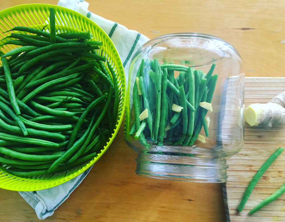 Lacto-Fermented Ginger Green Beans