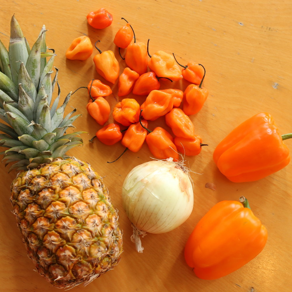 Recipe: Fermented Pineapple Habanero Hot Sauce