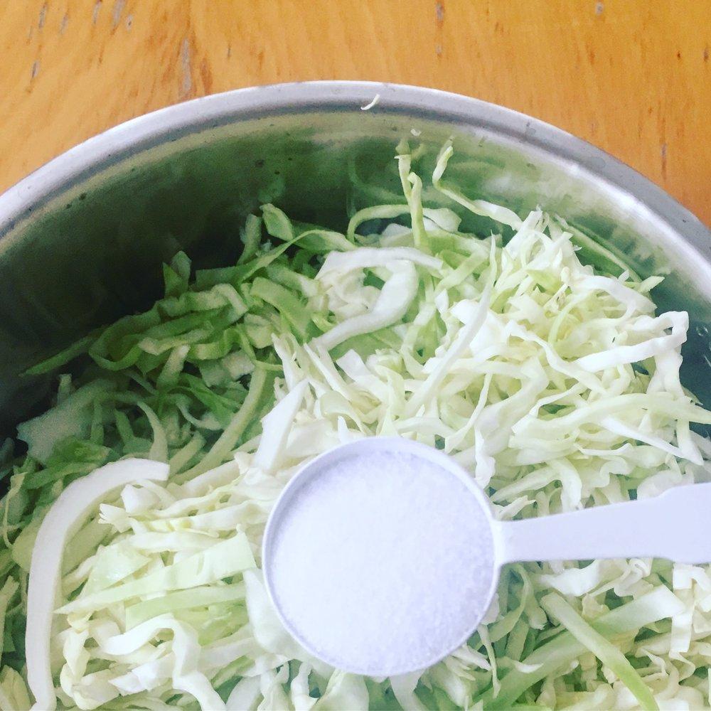 Adding Salt to Cabbage to Make Sauerkraut