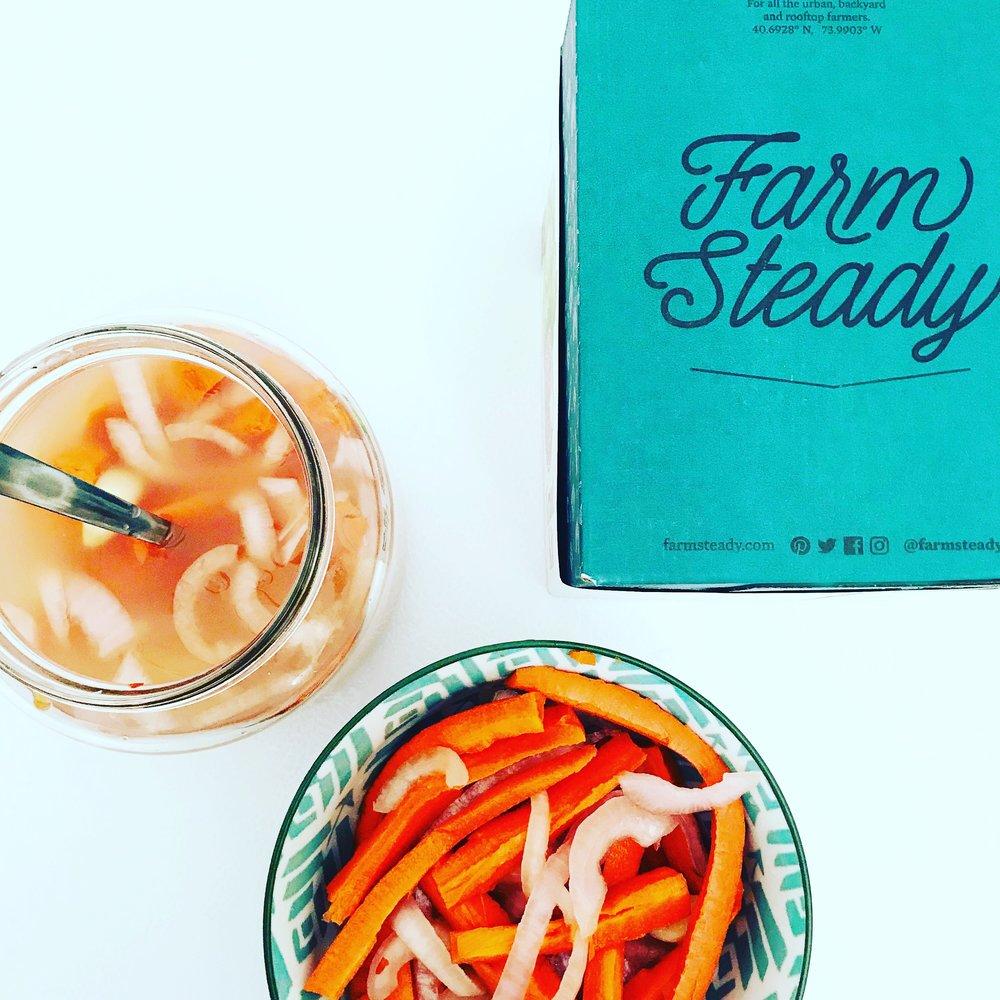 Lacto Fermented Carrot Sticks in Brine
