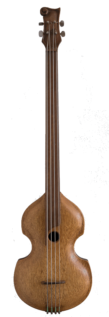Violin Shaped Bass