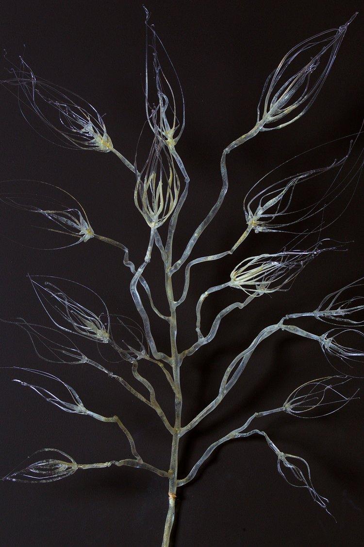 Life Tree / detail