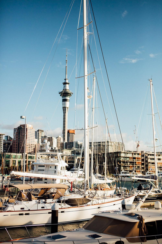NEW ZEALAND_AngeloDalBo_04.jpg