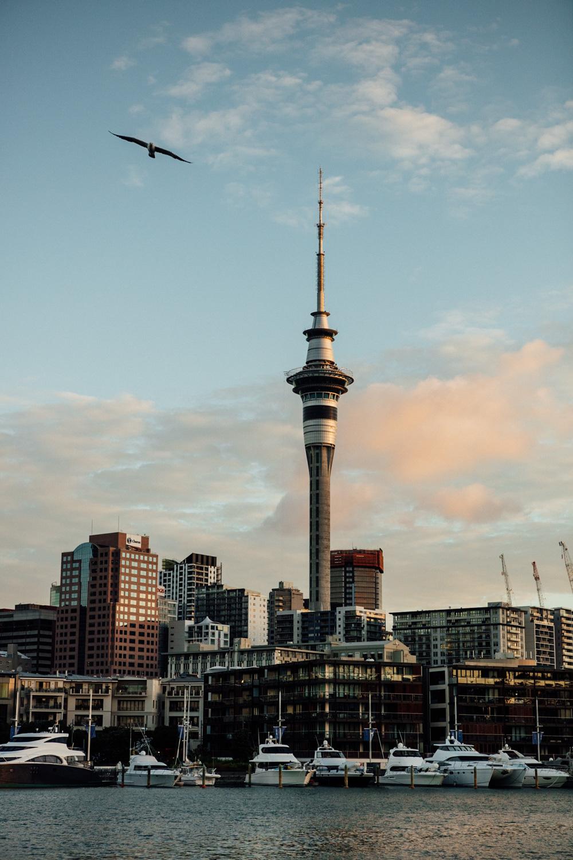 NEW ZEALAND_AngeloDalBo_07.jpg