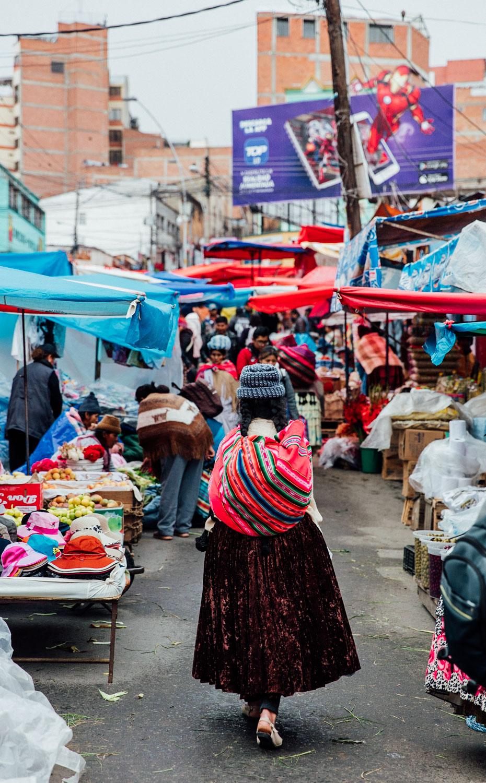 VAMOS-Latam - La Paz_AngeloDalBo_22.jpg