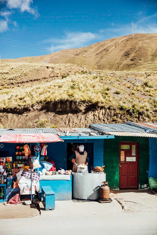 VAMOS-Latam - La Paz_AngeloDalBo_27.jpg