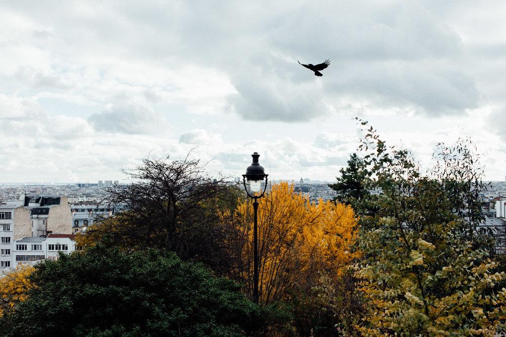 PARIS_AngeloDalBo_07.jpg