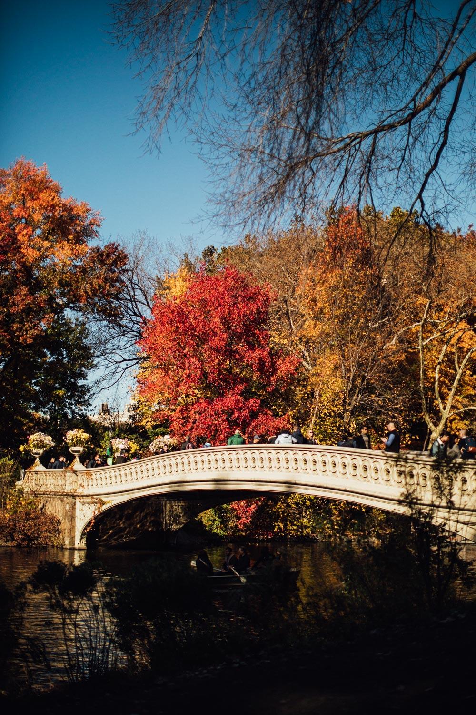 NEW YORK_AngeloDalBo_07.jpg