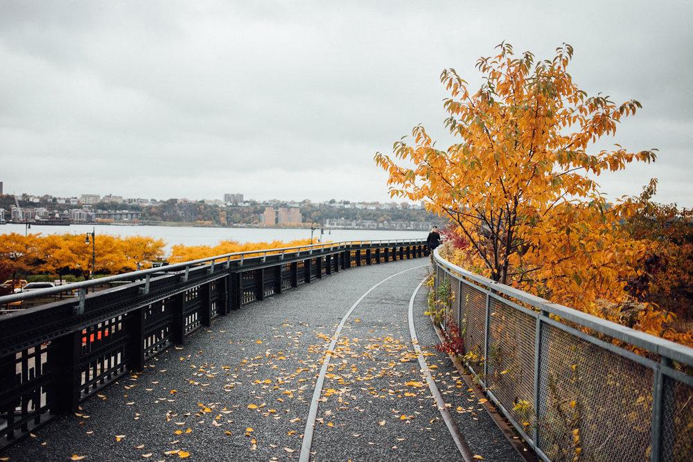 NEW YORK_AngeloDalBo_38.jpg