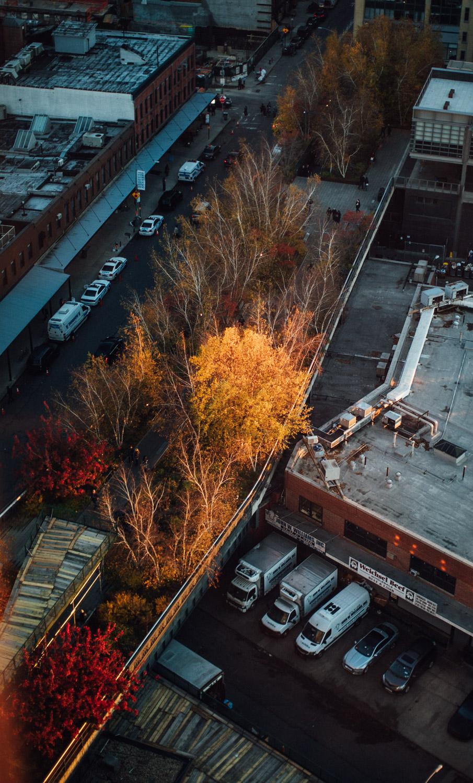 NEW YORK_AngeloDalBo_44.jpg