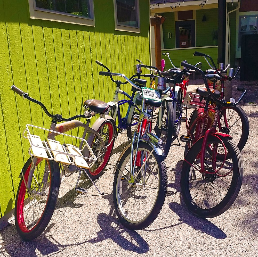 BikesAll.jpg