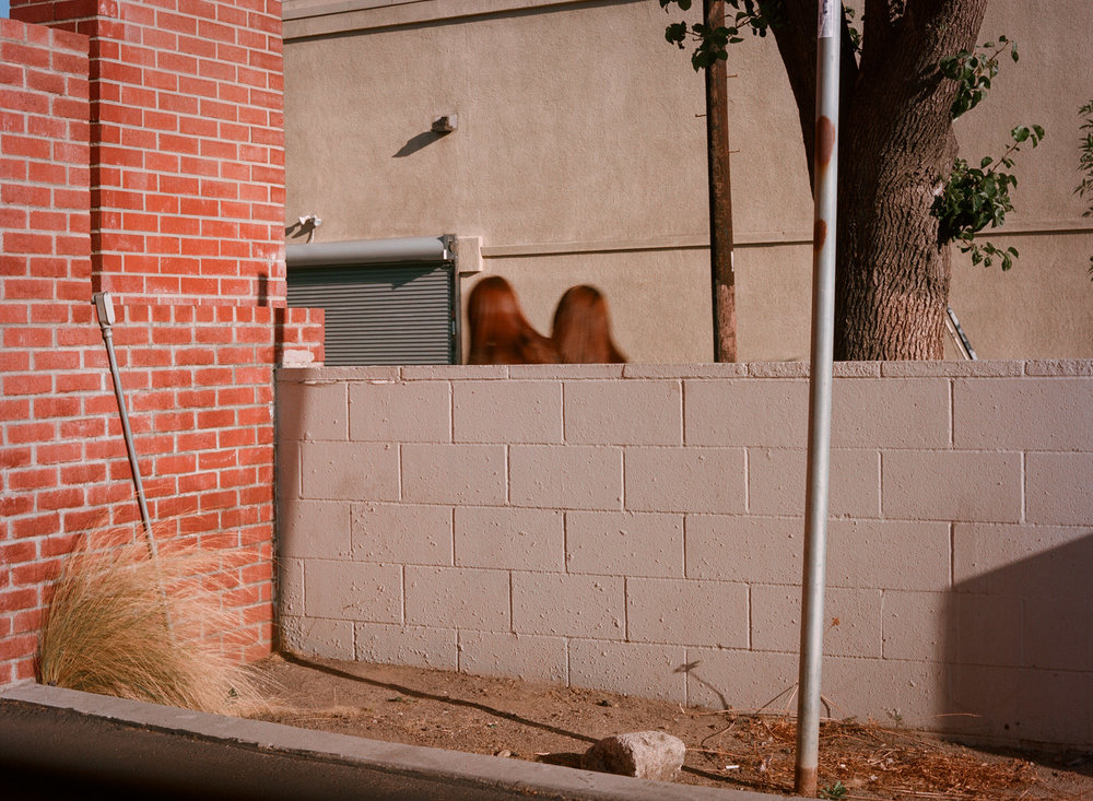 Weston James Palmer Twins.jpg