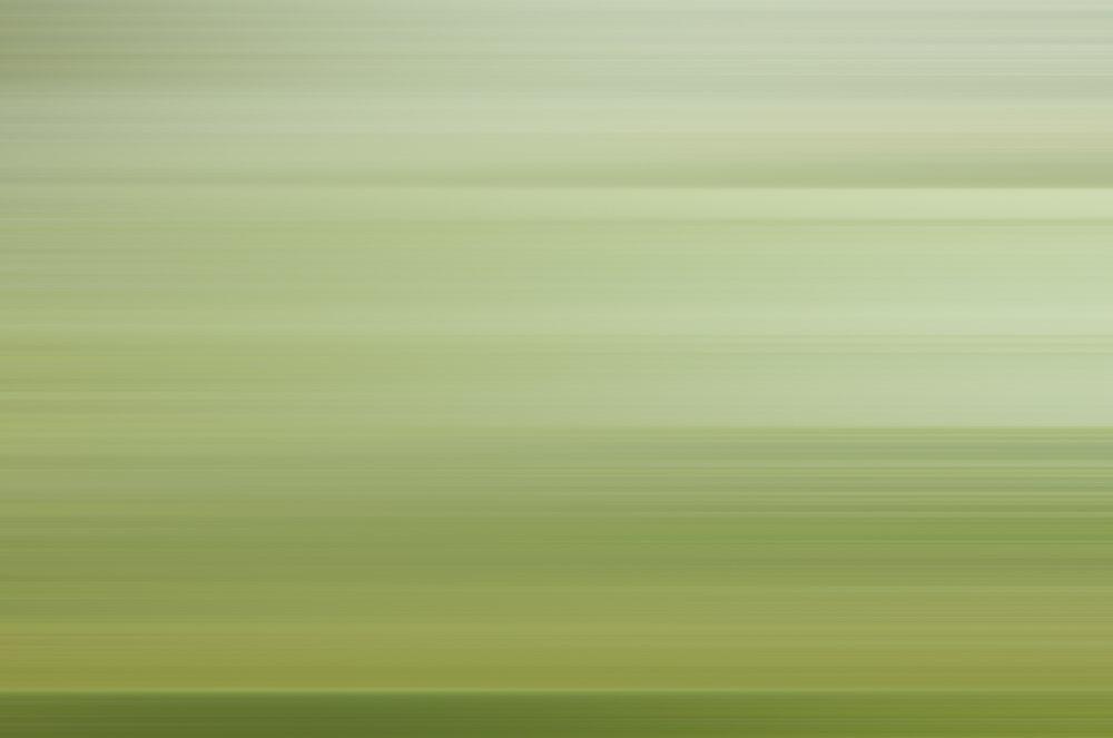 Weston James Palmer-Motion-87.jpg
