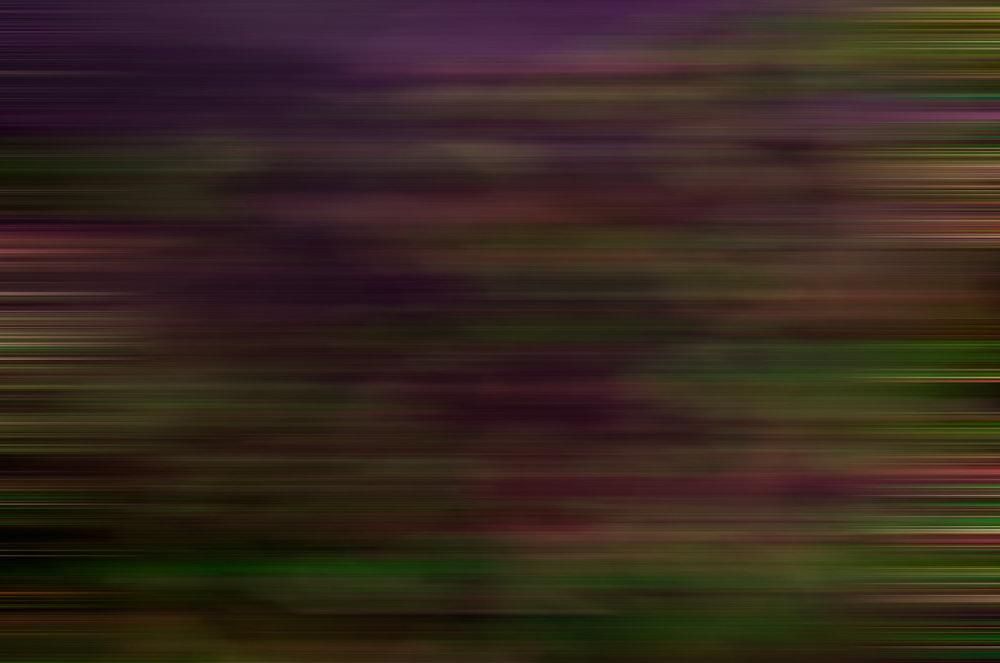 Weston James Palmer-Motion-184.jpg