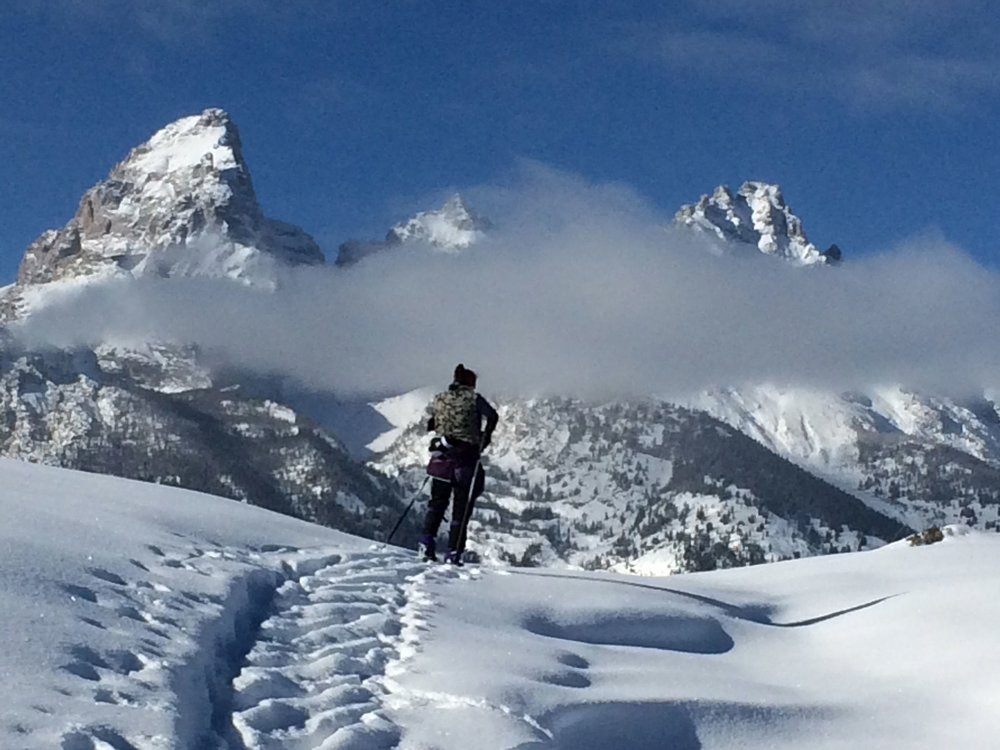 Cross-country skiing in grand teton national park