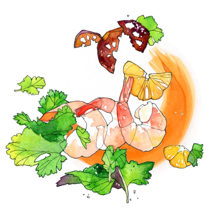 Outerlands-Shrimp_Watercolor_700px.jpg