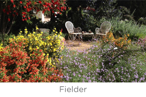 fielder.jpg