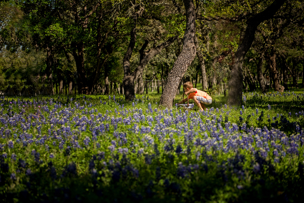 Easter Egg hunting; Texas style.