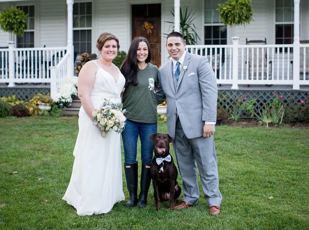 - WEDDING SERVICEWe know your pets are beloved members of your FAMILY! So why not have ALL family members present on your special day?These are once in a lifetime moments, so while you are enjoying your beautiful day,we will handle the legwork so your furbaby can be part of the joyful event! We will help you make purrfect memories!We will be happy to pick your pet(s) up from their location, bring them to your ceremony or photography session, help you with handling and pictures and then pet taxi them back when finished. We can even put on your pet's designated bow tie or flowers, do a little brushing between pictures, have squeaky toys, treats and fresh water available and overall ensure your photos are fun and successful! We are also experienced with the famous gopro action camera and we even have a harness so that your pet(s) can video the entire ceremony from their view, HOW COOL?!For inquiries or more information on our special event services please contact us here !________________________________________