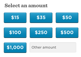 Obama-Amount-Options