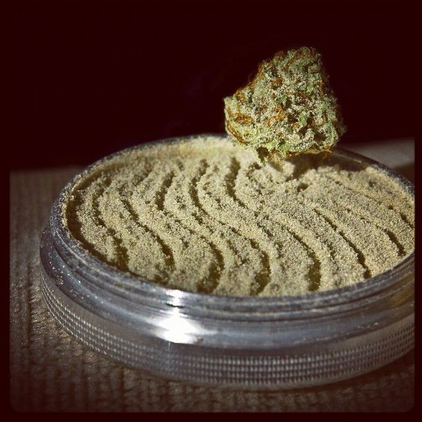 What is Kief? - Back to the Basics: What is Kief?