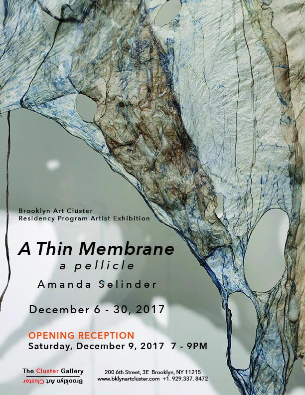 A Thin Membrane Poster_Small.jpg