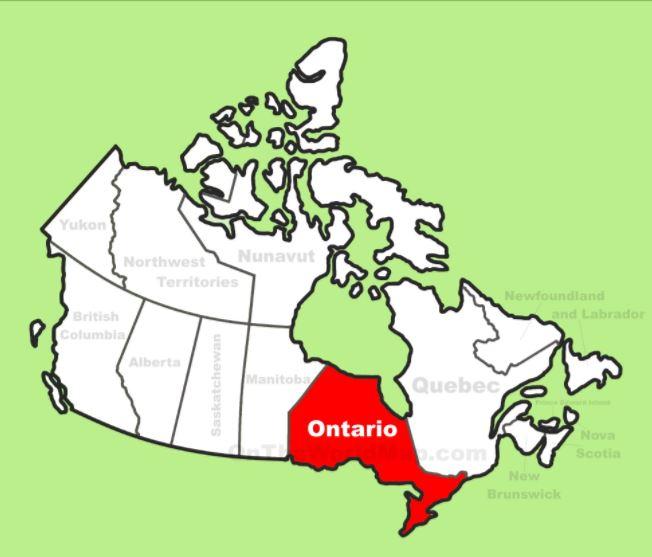 TORONTO - Eastern CanadaDorina & Shannon / Hayworth & CoT: (416) 783-9114 | F: (416) 783-1650moirahayworth@bellnet.caOntario