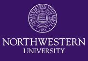 Northwestern University NHSI Cherubs Program