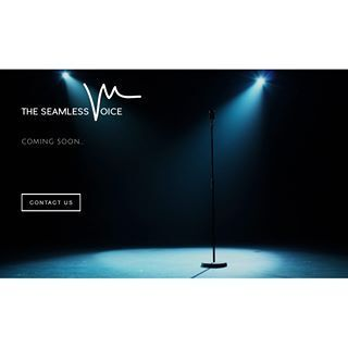 The Seamless Voice | Marlon Saunders