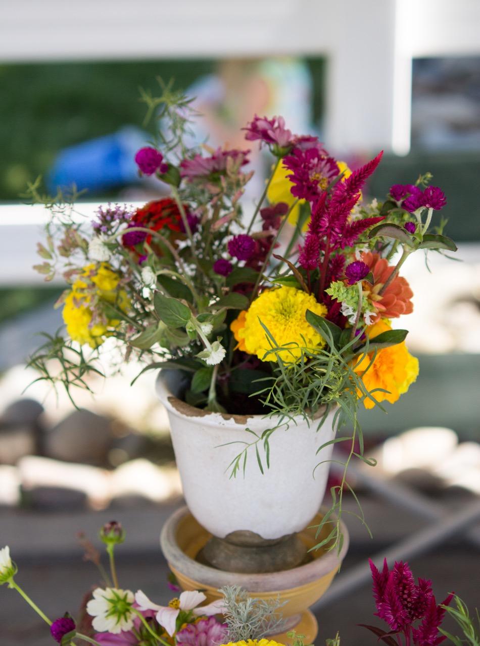 Cut Flower Care Guide Sierra Flower Farm
