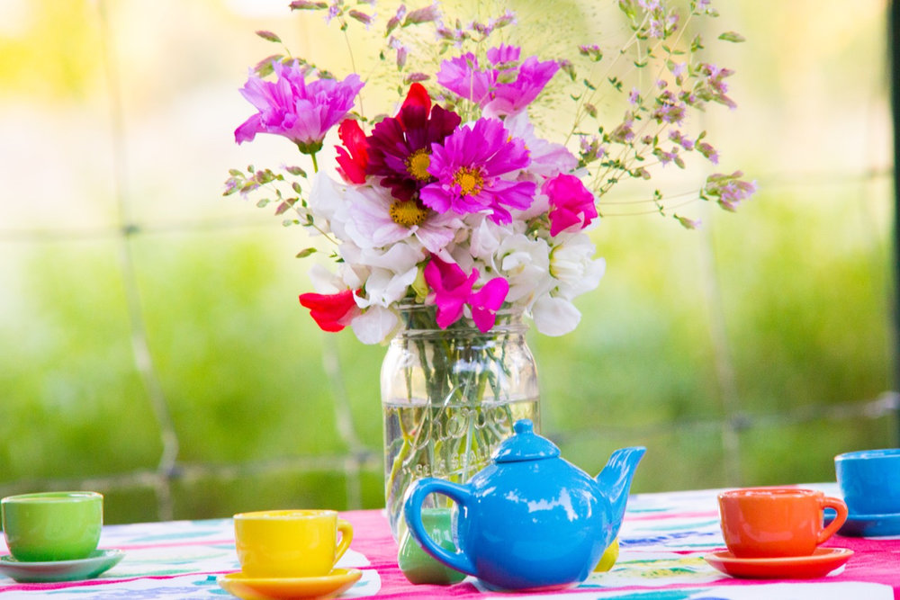 Versailles cosmos and double click cosmos complete the tea party with some oregano flowers and sweet peas.