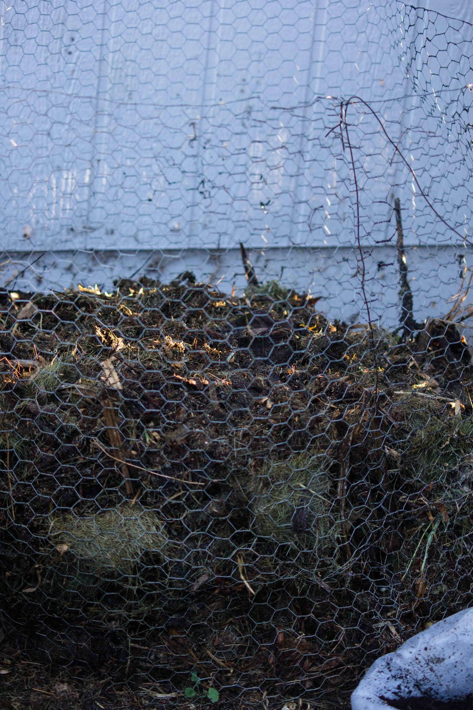 compost.2.jpg