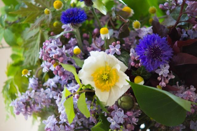 springflowers2017.jpg