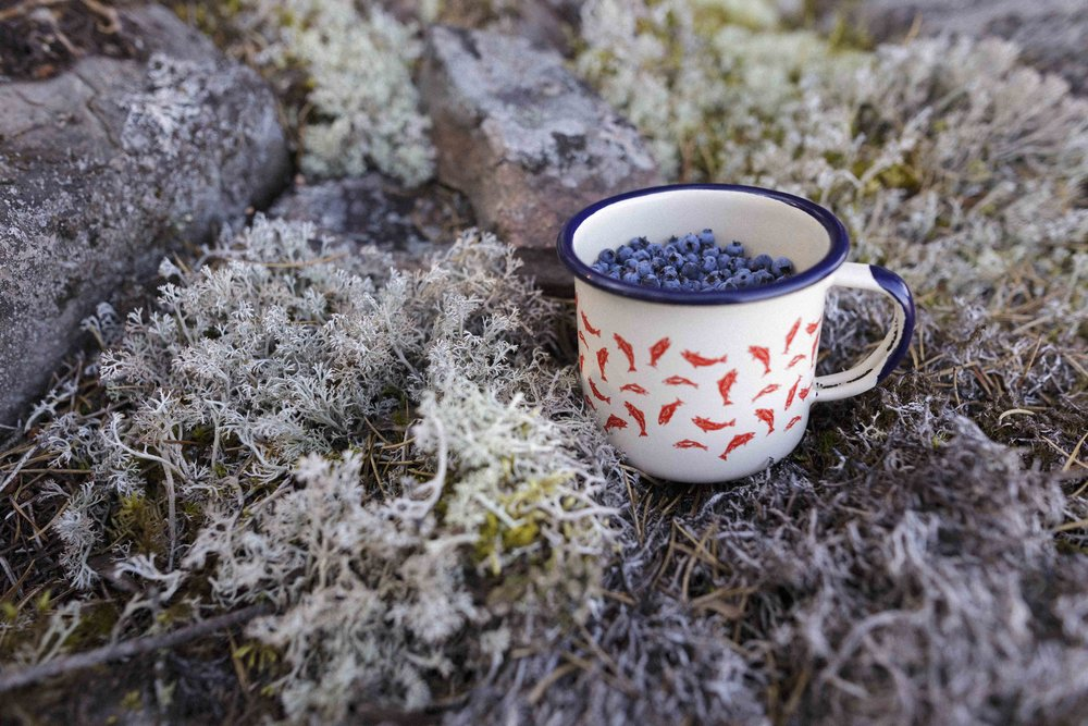 A mug of hand picked blueberries. This mug is a part of Collection 2 by From Here & Away.