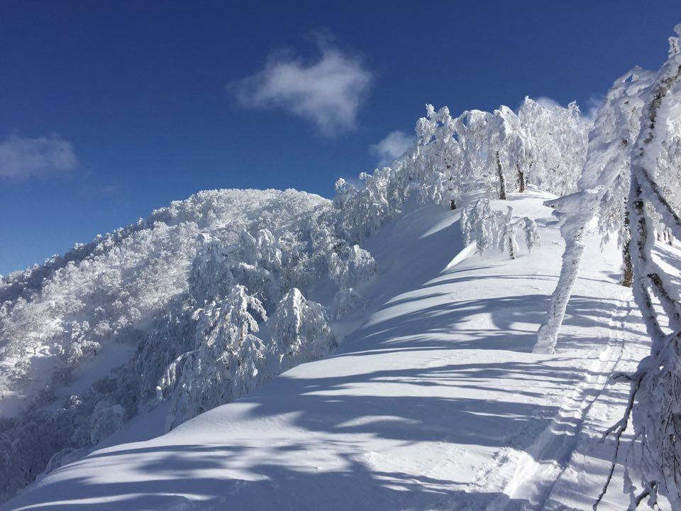 skin line up to summit of Shiribetsudake
