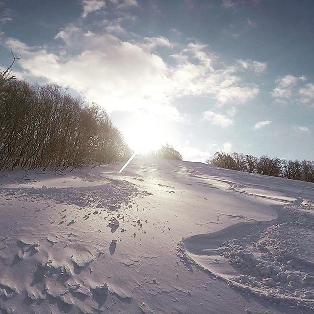 Cheeky early morning powder turns! #powdertriangletour . . . . . . . #kamuiskilinks #japow #centralhokkaido #ontour #tourlife #guidelife #freeriding #snowboarding #japan