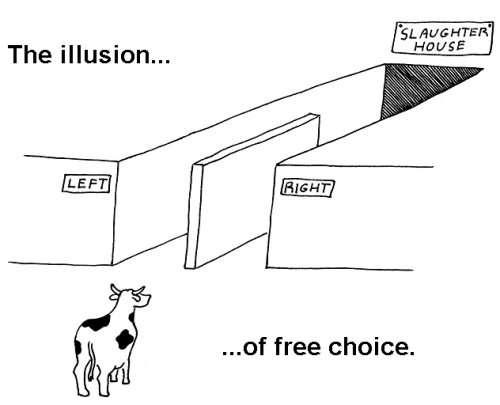 illusion-of-free-choice.jpg