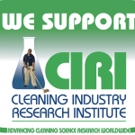 House cleaning and Carpet cleaning