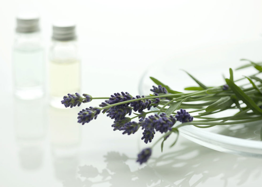 clean-with-herbs the doterra way.jpg